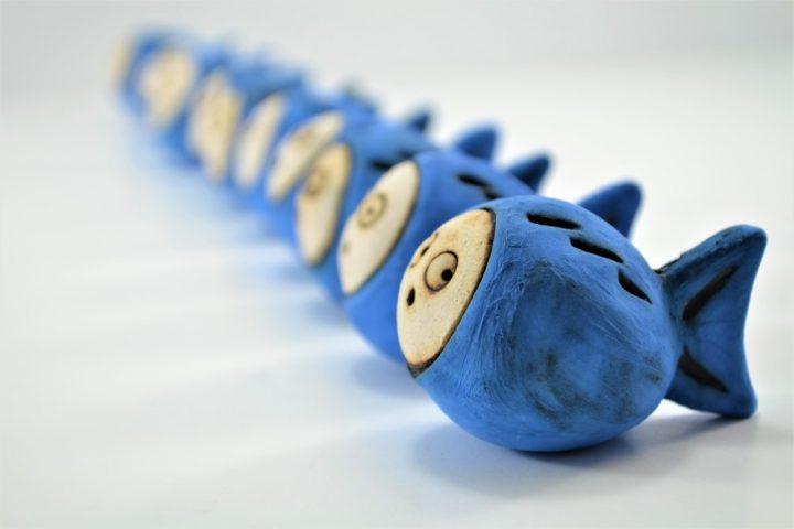 Blue Nemo Fish
